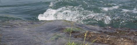 Grundwasser Tuggen